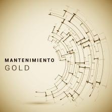 Mantenimiento GOLD (a partir de 5 ordenadores)
