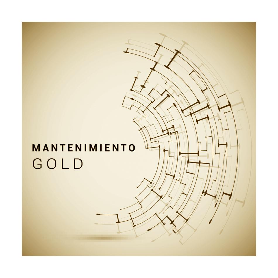 Comprar Mantenimiento GOLD (a partir de 5 ordenadores)