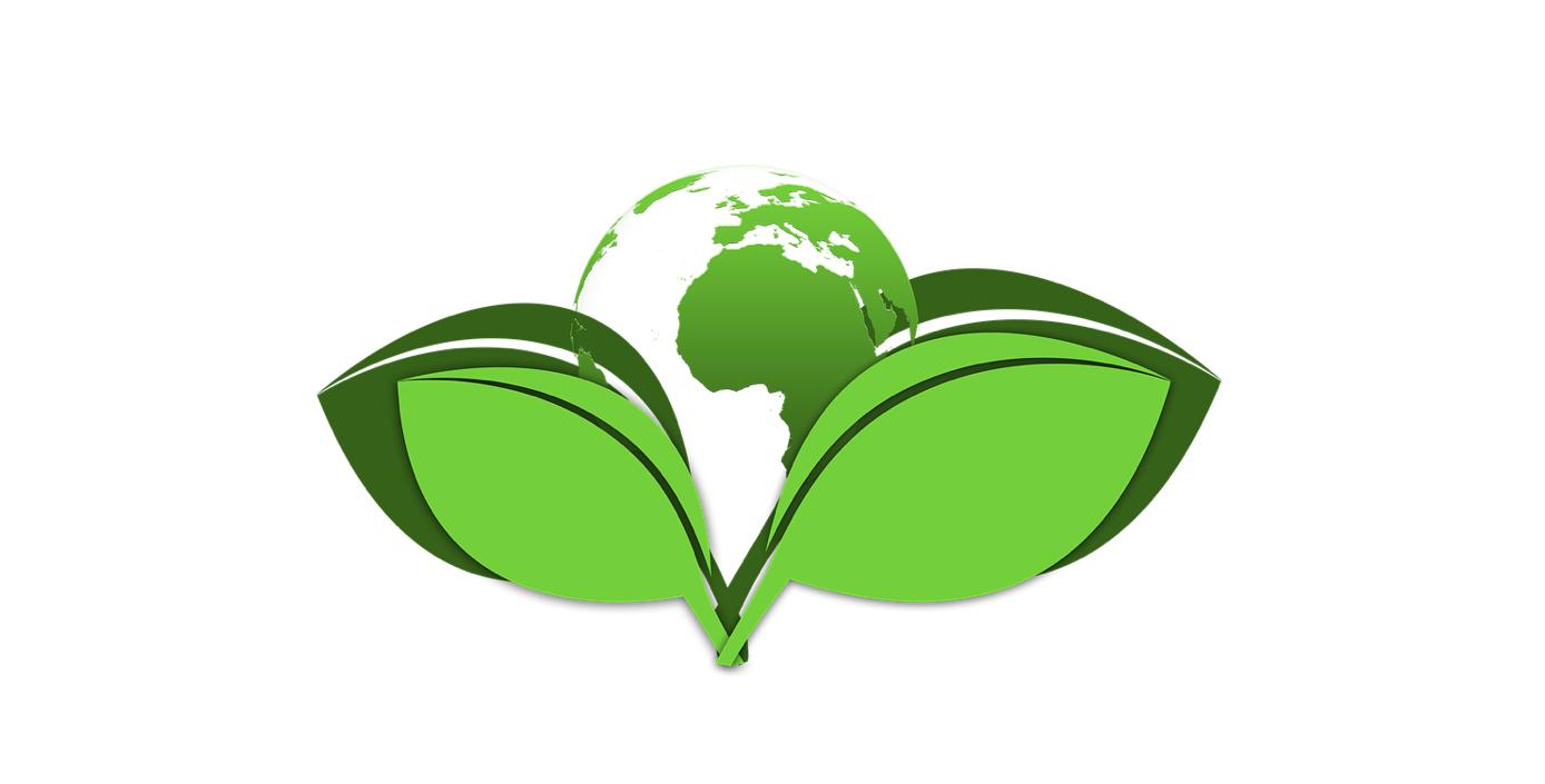 Infocomputer con el medio ambiente. Miembro de Ecoembes y colaborador de Recyberica Ambiental